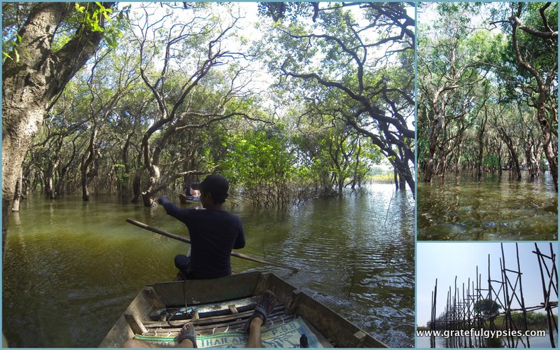 Side trip through the mangrove forest.