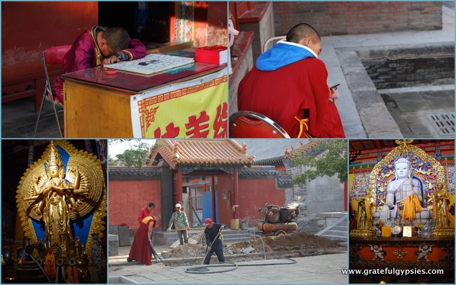 Monks taking care of business.