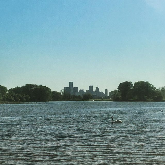 A great view of downtown Detroit on a nice dayhellip