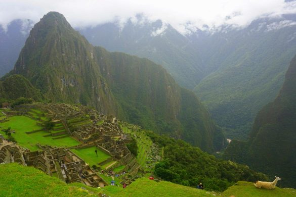 Jungle Trek to Machu Picchu