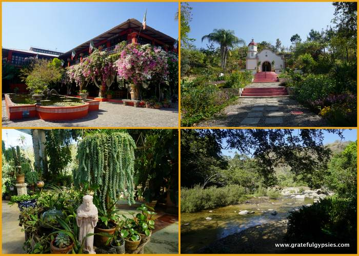 things to do in Puerto Vallarta Botanical Garden
