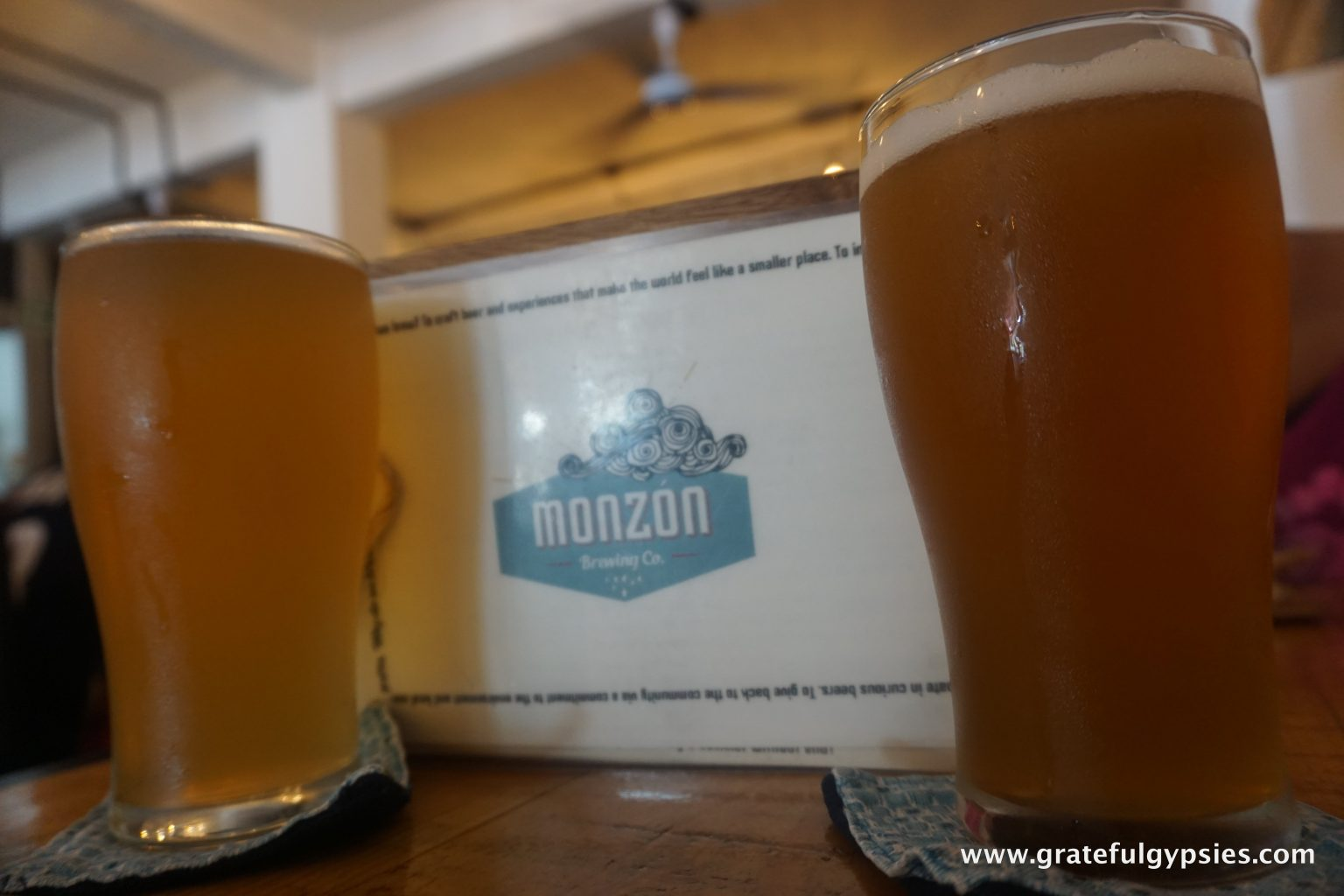 things to do in Puerto Vallarta craft beer