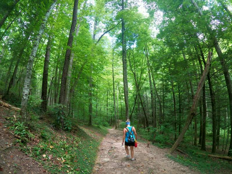 hiking in the smoky mountains meigs creek trail